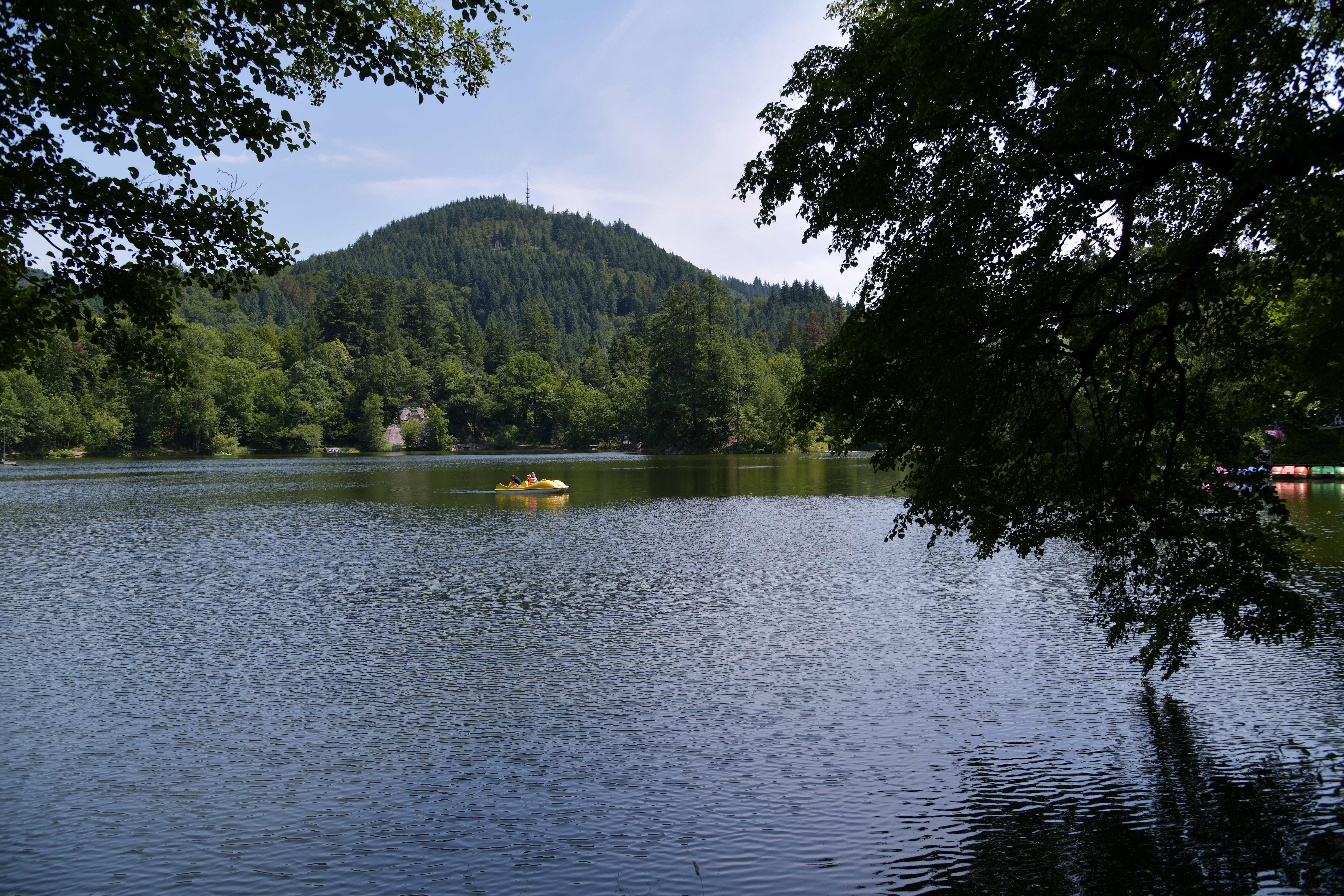 From the Bergsee to high in the forest