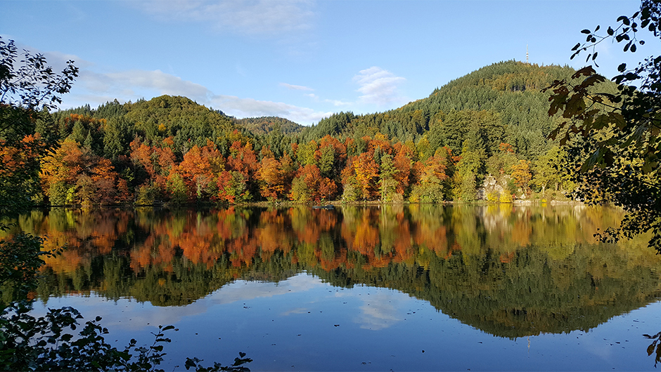Bergsee Bad Säckingen