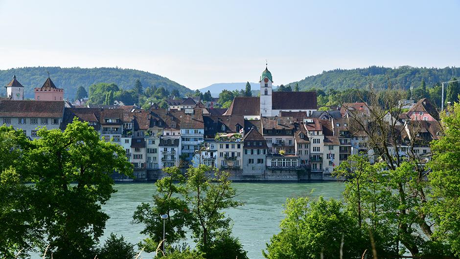 Прогулка вдоль берега Рейна г. Райнфельден