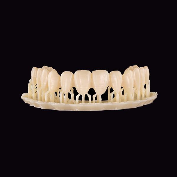 Arcada dentaria impresa en 3D.