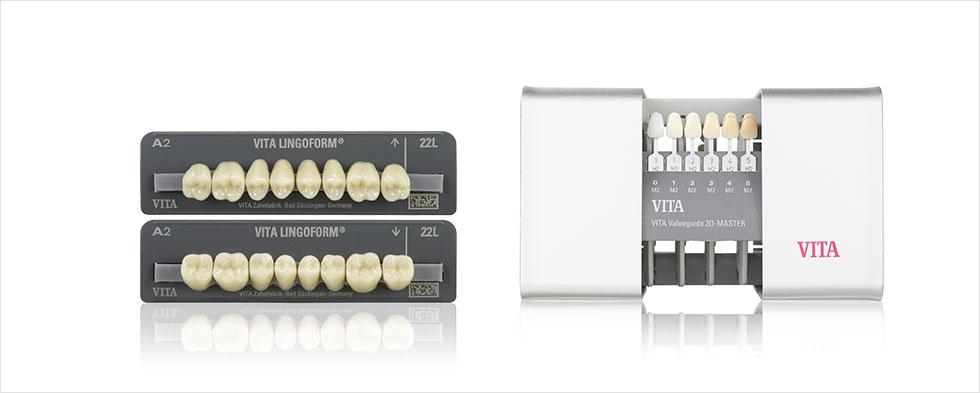 VITA LINGOFORM acrylic teeth, VITA Linearguide 3D-MASTER